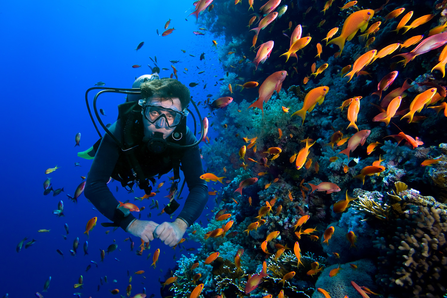 Requirements for Diving Activities