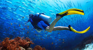 Diving Activities For Underwater Construction Purposes